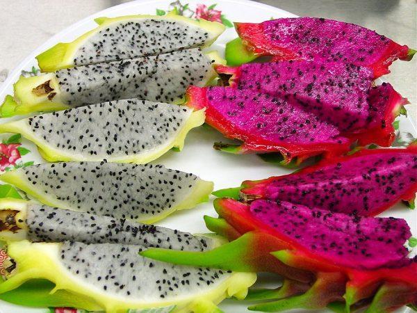 Drachenfrucht-Kaufen