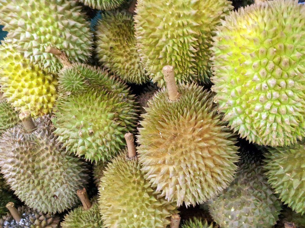 Durian-Kaufen-Frucht