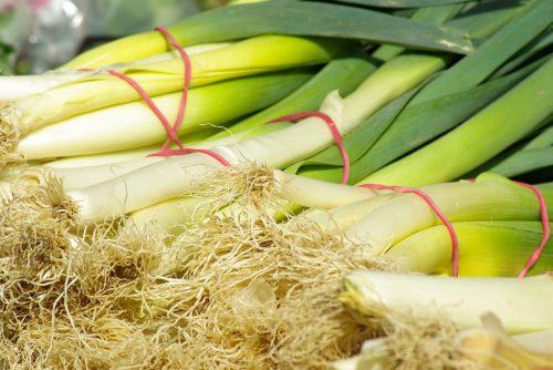 Lauch Porree Gemüse