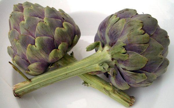 Artischocken Gemüse
