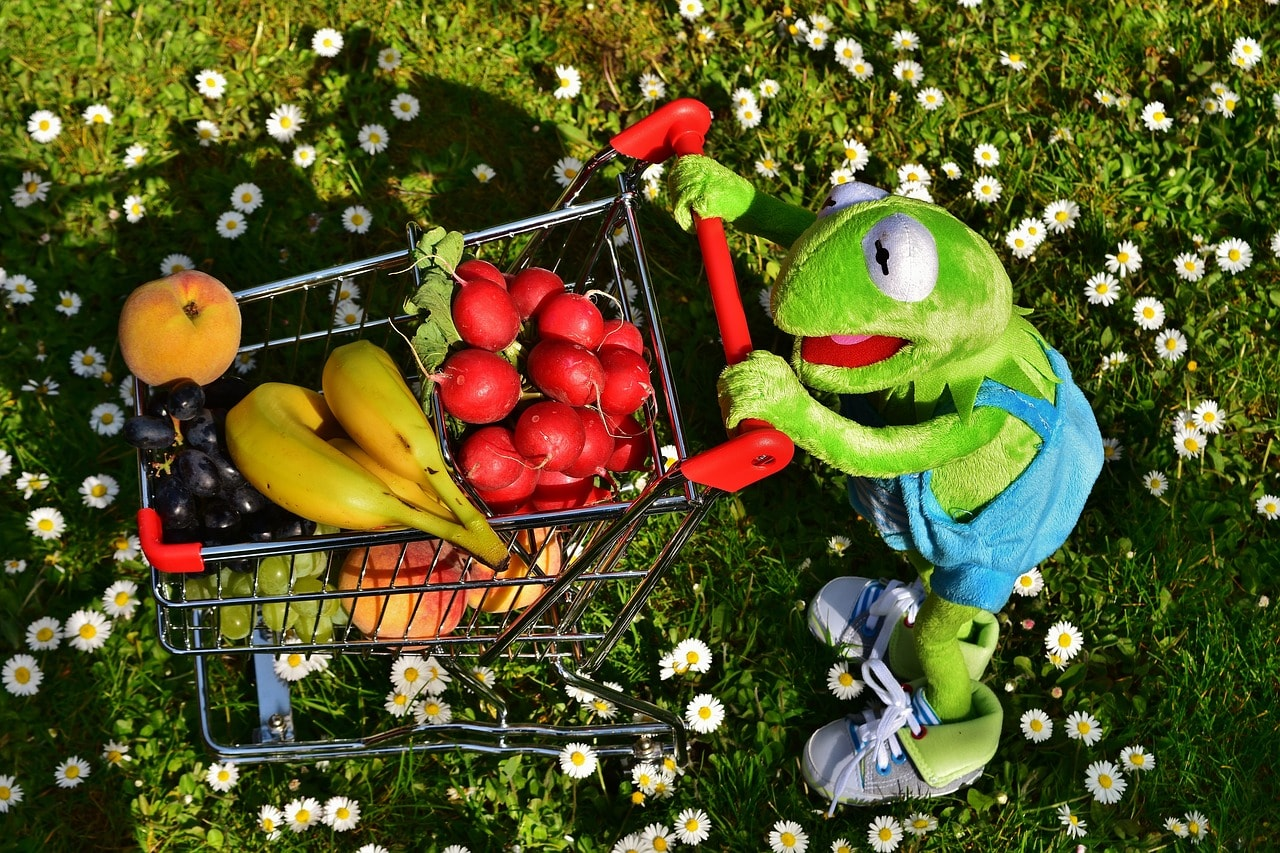 Obst-Gemüse-Einkaufswagen-Kermit-Frosch